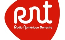 RNT 2013 : petit guide pratique à destination des éditeurs